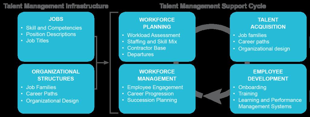 ScottMadden's Talent Management Framework