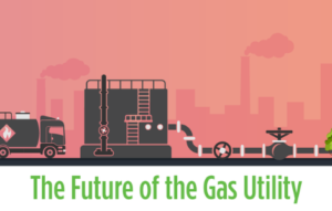 The future of the gas utility